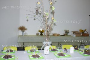 decoration-bapteme-charente-table-decoration-table-verte-et-marron