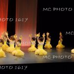 photo-danse-spectacle-école-charente-maritime.j